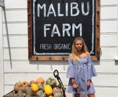 Malibu, LA: Malibu Farm